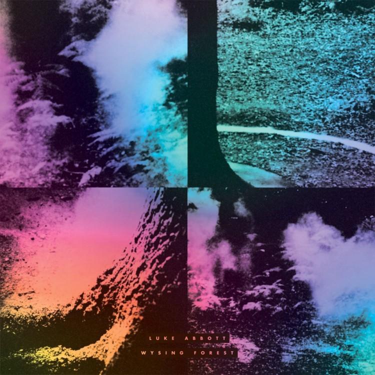 wysing-forest-luke-abbott-by-volume